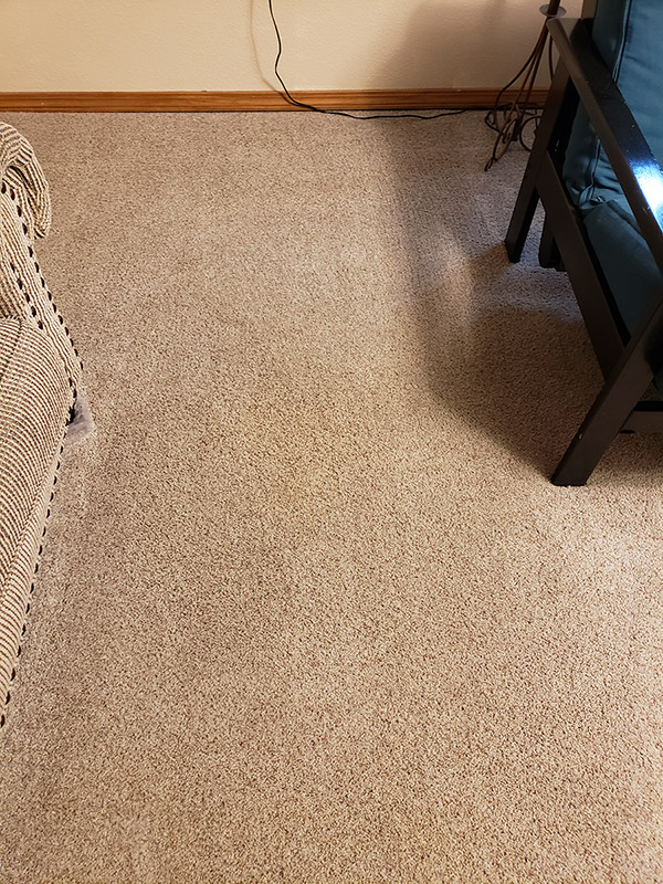 Clean carpet after carpet cleaning