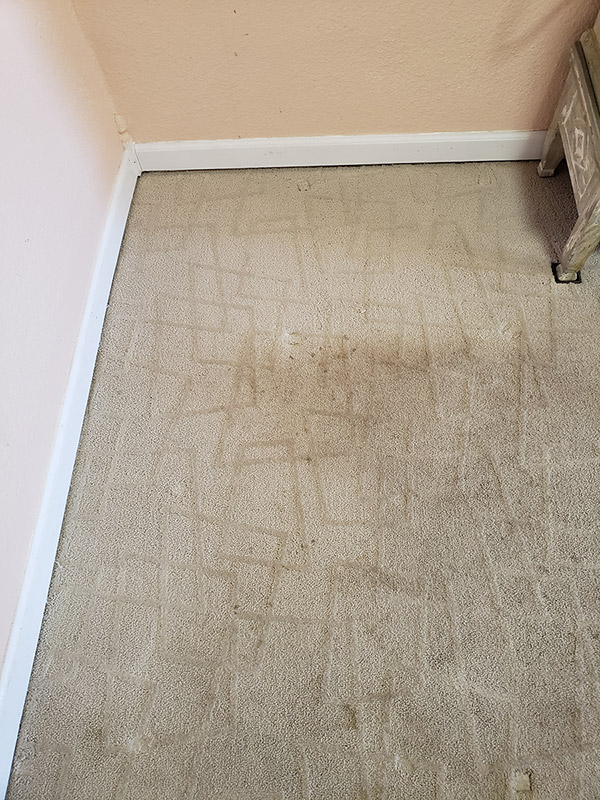 Picture of a dirty carpet before carpet cleaning