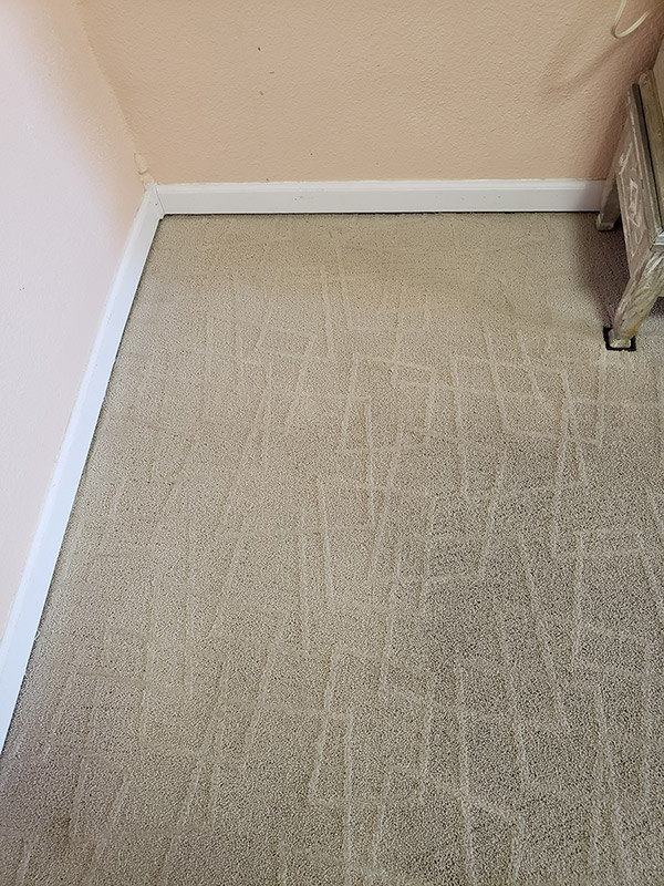 After picture of a carpet that has been cleaned